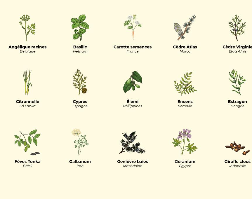 Calendrier des récoltes de mars