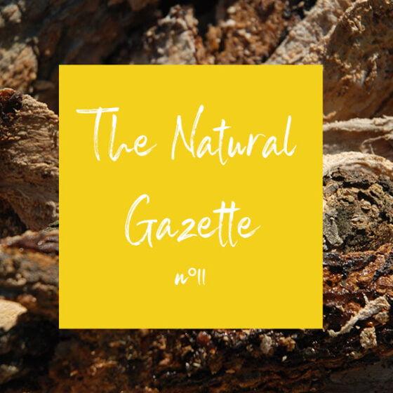 The Natural Gazette n°11