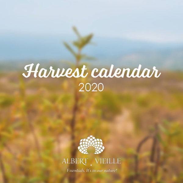 December harvest calendar