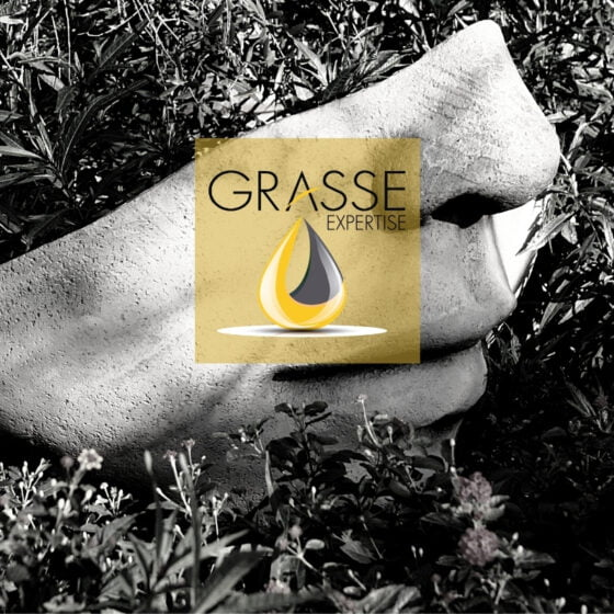 Our Grasse Expertise membership has been renewed